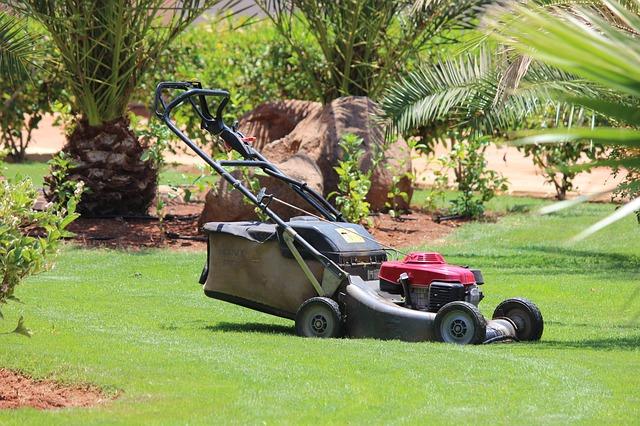 lawn-mower-320799_640.jpg
